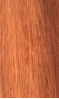 legno -lineascale